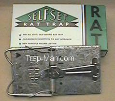 self set rat trap